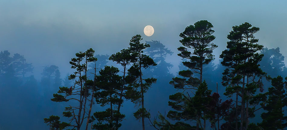 Haceta Beach Lake Florence Moon