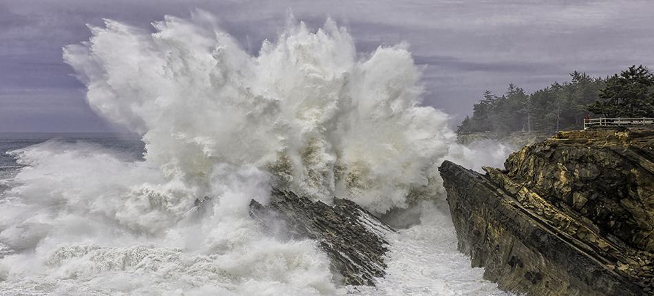 Shore Acres Wave